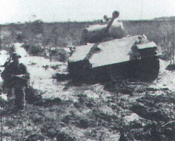 Nordland Panzergrenadier division - Page 2 - Axis History Forum