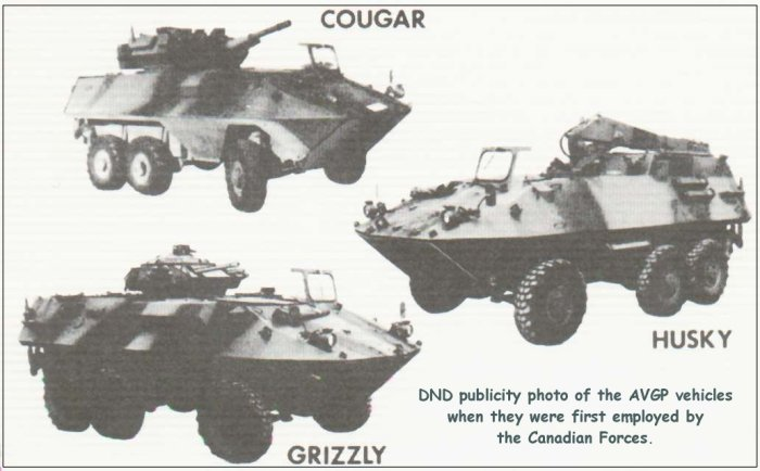 The AVGP family of vehicles (cdts: missing-lynx.com)